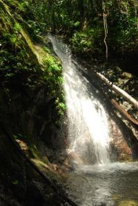 Cabacan Falls, one of the 12 waterfalls in Adams